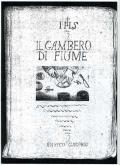 la copertina del primo manoscritto